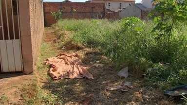 Homem é brutalmente torturado e morto após furtar 2 g de droga em Campo Grande - O corpo foi encontrado nesse fim de semana. O motivo: ele teria furtado dois gramas de droga de traficantes.