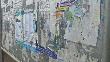 Prefeitura deve fazer limpeza me postes e pontos em janeiro - Prefeitura deve fazer limpeza me postes e pontos em janeiro