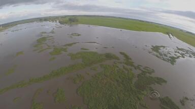 Quase 2 mil famílias estão fora de casa por causa da enchente - Na Fronteira Oeste do RS, lavouras inteiras estão alagadas.
