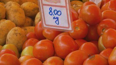 Preço alto do quilo do tomate deixa consumidores insatisfeitos no Sul de Minas - Preço alto do quilo do tomate deixa consumidores insatisfeitos no Sul de Minas