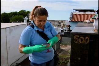 Cemitérios de Divinópolis viram criadouros para o Aedes aegypti - Vasos e pratinhos de flores ficam repletos de água parada.Setor de Endemias informou que limpeza é feita frequentemente.