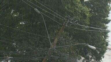 Árvore cai em cruzamento da Avenida Norte-Sul em Campinas - Árvore que caiu nesta tarde de sexta-feira (15) na Avenida Norte Sul ficou presa na fiação elétrica e fechou um lado da pista. Foi necessário fazer um corte de energia.