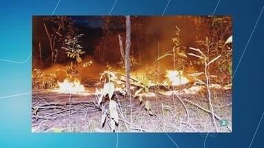 Incêndio atinge área ambiental no município de Barcelos, no AM - Chamas podem atingir reserva de combustível de aeroporto.