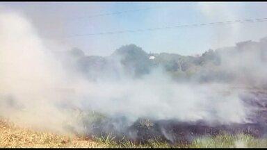 Bombeiros atendem seis focos de incêndio em um dia em Foz. - Telespectadora flagrou um desses incêndios em um bairro da cidade.
