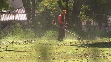 Equipes começam a roçar terrenos públicos que estavam com mato alto. - Problema foi mostrado há alguns dias pelo Paraná TV.
