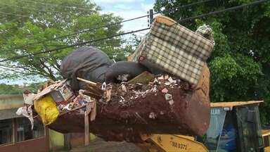 Quem não separar o lixo corretamente pode ser multado - Além de limpar o quintar é importante saber o que fazer com o entulho.