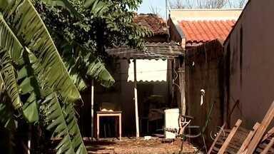 Polícia investiga morte de menino encontrado pendurado em árvore - A Polícia Civil de Olímpia (SP) investiga a morte de um menino de 9 anos. Augusto Gabriel de Campos foi encontrado pendurado em um pé de goiaba, que fica no quintal da casa de sua avó materna, no Jardim Cecap, na sexta-feira (21). O corpo dele foi enterrado no final da tarde deste sábado (22), em Olímpia.