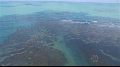 Caribessa/PB e a Baía de Todos os Santos chamam atenção por sua beleza - Praia do Bessa/PB e Baía de Todos os Santos chamam atenção por sua beleza