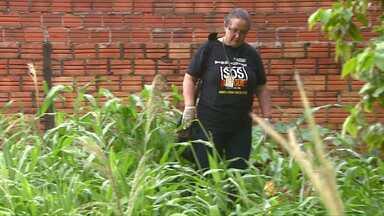 Morador que não cuidar do quinta pode ser preso - Em Marechal Cândido Rondon o Ministério Público vai mandar pra cadeia o morador que deixar o quintal com água parada e não limpar depois de receber a notificação da prefeitura.
