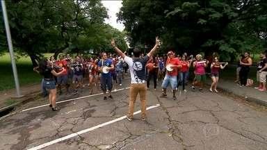 'Pholia na Luz' agita o sábado (30) no Centro da capital - A expectativa é que dez foliões participem do evento que conta com a participação de 17 blocos.