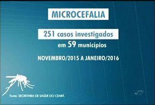 Zika vírus preocupa órgãos de saúde do Cariri - Doença está ligada a casos de microcefalia em bebês, segundo Governo Federal