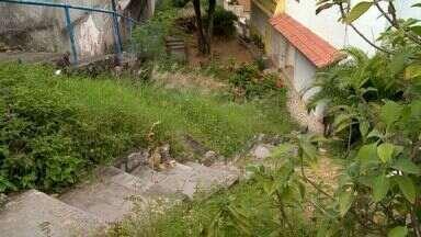 Moradores da cidade alta, em Vitória reclamam de mato e escadarias sujas - Prefeitura disse que fará a limpeza do local e pede ao moradores para solicitar o serviço papa móveis pelo telefone 156.