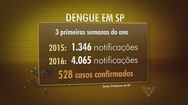 Aumento dos casos de dengue em São Paulo é superior a 200% - Pesquisadores descobriram que o vírus da zika pode causar cegueira em bebês.