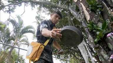 Forças armadas entram na guerra contra o mosquito - 71 mil militares vão atuar em 32 municípios do Rio de Janeiro
