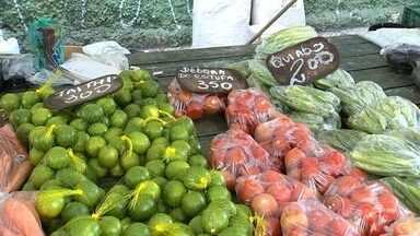 Clima afeta preço de alimentos nesta época do ano - Alguns legumes e hortaliças estão mais caros. Esta época do ano é complicada por causa do clima. A TV TEM foi às ruas para reunir dicas para quem quer economizar.
