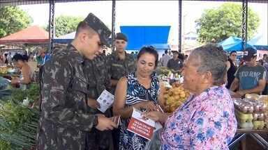 Combate ao Aedes aegypti reúne militares e agentes de saúde pelo país - Até a presidente Dilma Rousseff vestiu a camisa e visitou algumas casas em Santa Cruz, na Zona Oeste do Rio.