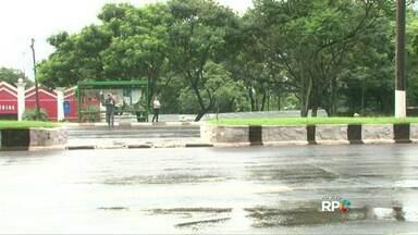 Será que o motorista respeita a faixa de pedestre? - O Paraná TV fez o teste ao vivo durante o jornal