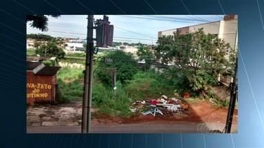 Telespectadores enviam fotos de locais com risco de focos do Aedes aegypti em Goiânia - No Jardim América, um lote vago tem sido usado como depósito de lixo pelos moradores.