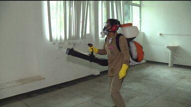 Paranaguá segue com mais casos de dengue - Secretaria da Saúde divulgou novo boletim nesta terça-feira.