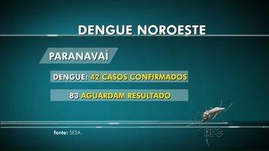 Sesa divulga novos números da dengue no Paraná - Veja como está a situação nas três principais cidades do noroeste.