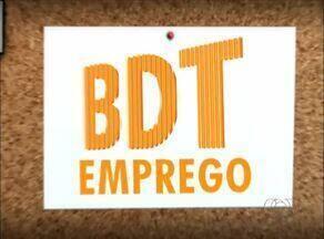 Veja as oportunidades desta terça-feira (1º) no BDT Emprego - Veja as oportunidades desta terça-feira (1º) no BDT Emprego