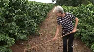Mulheres mais velhas se consideram exemplos de força e determinação - Mulheres mais velhas da região de Bauru (SP) se consideram exemplos de determinação e força por meio das atividades realizadas no cotidiano.