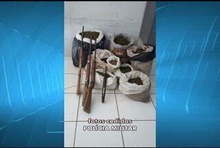 PM apreende 20 kg de maconha e 40 armas em operação no Norte de MG - Ação foi realizada em seis cidades da região da Manga. Droga foi apreendida em ilha do São Francisco, onde era feito o plantio.