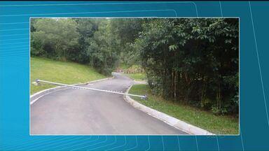 Postes do Bosque Municipal Vista Alegre são depredados - Vinte e cinco dos trinta e nove postes foram arrancados e os fios roubados