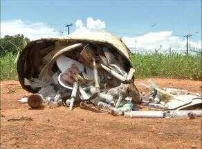 Vacinas são descartadas de forma incorreta em terreno baldio - Vacinas são descartadas de forma incorreta em terreno baldio