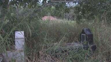 Sem limpeza, matos crescem em cemitérios de Porto Velho - Furtos em veículos já foram feitas por criminosos perto do local.