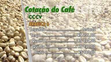 Veja como ficou o mercado do café nesta semana, no ES - Acompanhe os preços do comércio do café de Vitória.