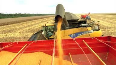 Confira o que foi notícia para o setor - Nova data para o leilão de áreas portuárias no PA e nova estimativa de safra de grãos marcam a semana