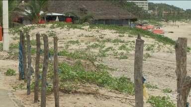 Prefeitura usa cercas para impedir que areia chegue ao calçadão na Litorânea em São Luís - Prefeitura está plantando salsa e delimitando a área com uma espécie de cerca; população estranhou.