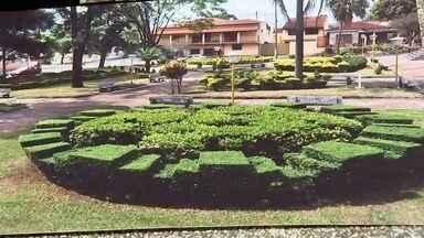 Jardineiro de Bocaina faz esculturas em plantas de praça - Em Bocaina (SP), um jardineiro cuida de uma praça com um trabalho diferenciado. Ele faz esculturas de personalidades em plantas e gramas do local, que se tornou um ponto turístico.