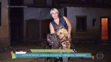 Ricardo Pereira conta como é a gravação com os animais em Liberdade, Liberdade - Conheça os cachorros que participam da novela das 11