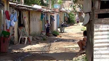 Recife registra 7 mortes por chikungunya - Boletim traz informações sobre onde há maior incidência de arboviroses.