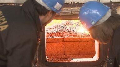 Mais de 800 quilos de cocaína são incinerados em Lages - Mais de 800 quilos de cocaína são incinerados em Lages