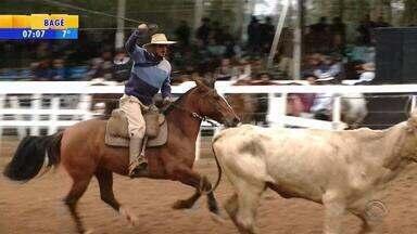 Rodeio Internacional tem provas finais de laço em Santa Cruz do Sul, RS - Festa tradicional ocorreu no domingo.