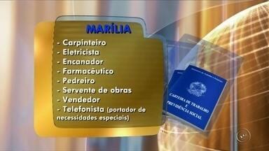 PAT de Marília disponibiliza vagas de emprego - O Posto de Atendimento ao Trabalhador de Marília (SP) oferece diversas vagas de emprego em diferentes áreas de atuação. Algumas das oportunidades são para carpinteiro, eletricista, encanador, farmacêutico. O PAT fica na Avenida Carlos Gomes, 137.