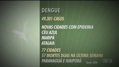 Mais três cidades entram em epidemia de dengue no Paraná - Número de casos no estado já chegam quase a 50 mil