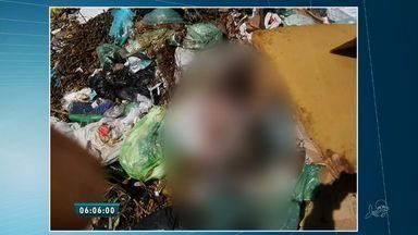 Bebês gêmeos são encontrados mortos em um lixão no Município de Baturité - Os corpos foram encontrados mutilados por moradores que chamaram a polícia.