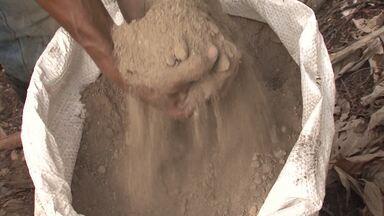 Agricultores de Coaraci adotam adubo orgânico para amenizar efeitos da estiagem prolongada - Resíduos industriais estão ajudando a aumentar a produtividade de várias culturas.