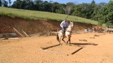 Equitação ajuda na reabilitação de pacientes em Santana do Paraíso - Clínica da cidade aposta na ajuda de animais para que jovens se recuperem.