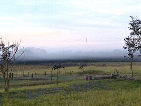 Rancharia registra as temperaturas mais baixas da região - Município teve geada e moradores tiveram que se agasalhar para sair de casa.