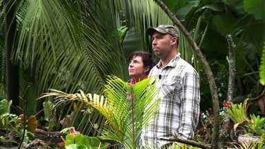 Artista australiano vive no meio da floresta na Serra da Mantiqueira - Cristian e a mulher moram no Parque Nacional do Itatiaia há 15 anos. Eles ajudam pesquisadores na proteção ambiental filmando e fotografando animais.