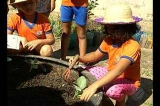 Escola de Outeiro faz merenda com produto de horta dos alunos - O projeto pretende garantir a alimentação saudável dos alunos.