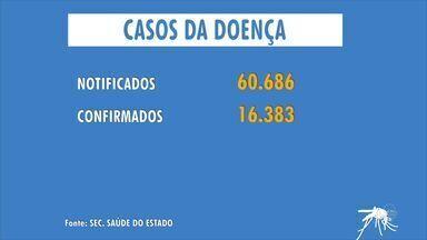 Ceará registra mais 2 mortes por dengue e confirma 16 mil casos - Estado totaliza oito mortes em 2016, sendo que quatro foram em Fortaleza.