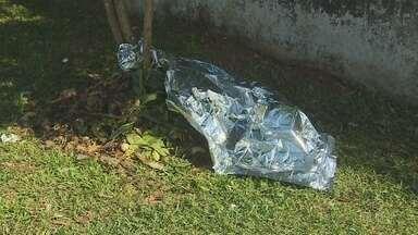 Motoqueiro morre após se chocar contra muro na Zona Sul de Macapá - Motoqueiro morre após se chocar contra muro na Zona Sul de Macapá