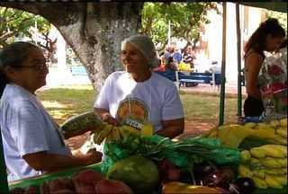 Praças do Cariri têm feiras tradicionais e de produtos orgânicos - Veja como participar.
