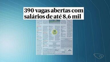 ES tem 390 vagas em concursos com salário de até R$ 8,6 mil - Seleções oferecem oportunidades para todos os níveis de escolaridade.Maior oferta está na prefeitura de Mantenópolis, com mais de 190 vagas.